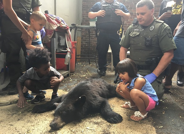 Children got a lesson in wildlife management after the Pa. Game Commission tranquilized a bear that had wandered into Harrisburg. (Katie Meyer/WITF)