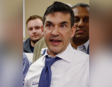 In this March 9, 2018 file photo, Val DiGiorgio, the Pennsylvania Republican Party chairman, talks with reporters during a campaign stop for Rick Saccone, at the party call center in Pittsburgh. (Keith Srakocic/AP Photo)