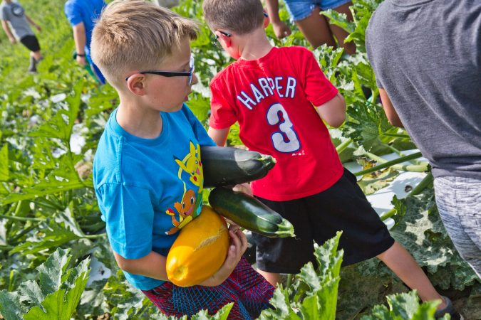 3rd grader Nathan Barnes carries squash at Duffield's Farm. (Kimberly Paynter/WHYY)