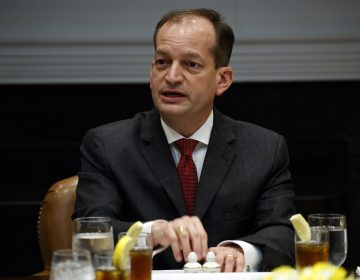 In this June 21, 2018, file photo, Secretary of Labor Alex Acosta speaks during a meeting with President Donald Trump and governors in the Roosevelt Room of the White House in Washington. Congressional Democrats are trying to increase pressure on Acosta over his handling of a secret plea deal with a wealthy financier accused of sexually abusing dozens of underage girls. A group of House Democrats is asking the Justice Department to reopen the deal with Jeffrey Epstein. (Evan Vucci/AP Photo, file)