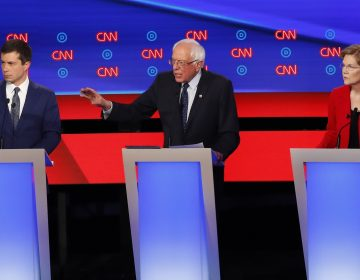 South Bend Mayor Pete Buttigieg, Sen. Bernie Sanders, I-Vt., and Sen. Elizabeth Warren, D-Mass., participate in the first of two Democratic presidential primary debates hosted by CNN Tuesday, July 30, 2019, in the Fox Theatre in Detroit. (Paul Sancya/AP Photo)