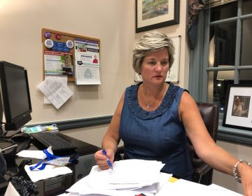 Stat Sen. Laure Sturgeon says the transition from teacher to state lawmaker has been challenging but 'I finally feel like I'm getting it.' (Cris Barrish/WHYY)