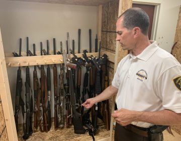 The Columbia County Sheriff's Department weapons storage facility is at 75 percent capacity of its weapons storage, according to Sheriff Timothy Chamberlain. Columbia and other rural counties tend to take multiple guns -- often dozens -- from defendants ordered to relinquish their weapons as part of protection from abuse orders. (Emily Previti/PA Post)