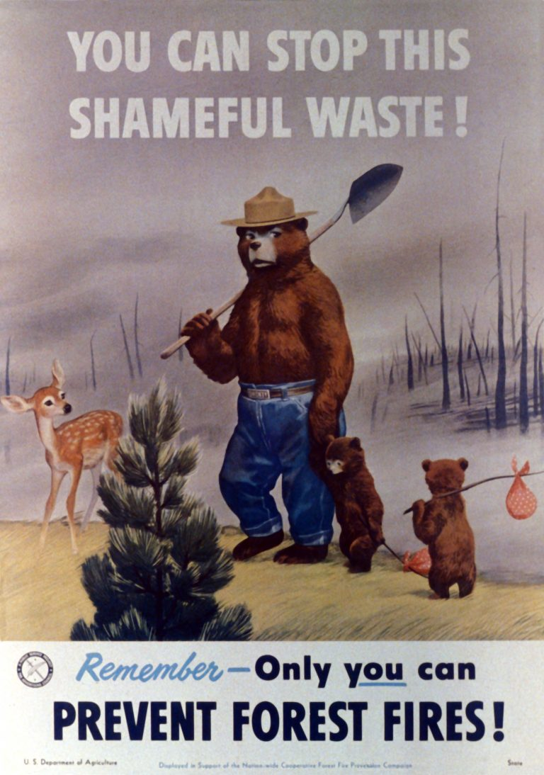 Smokey's look had changed by 1951; he gained a shovel and a stronger demeanor than his softer first appearance. (The Ad Council)