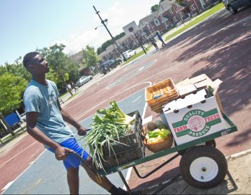 Ahmaj Jackson, 14, wheels fresh produce around the Ruth Bennett Community Farm in Chester, Pennsylvania. (Kimberly Paynter/WHYY)