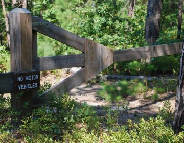 A gate keeps off-road drivers away from the Jemima Mount site