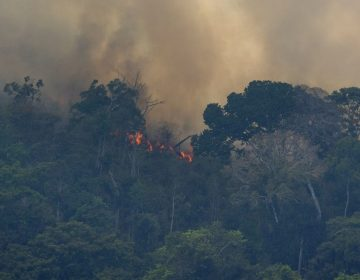Fire consumes the jungle near Porto Velho, Brazil, Friday, Aug. 23, 2019. Brazilian state experts have reported a record of nearly 77,000 wildfires across the country so far this year, up 85% over the same period in 2018. Brazil contains about 60% of the Amazon rainforest, whose degradation could have severe consequences for global climate and rainfall.(AP Photo/Victor R. Caivano)