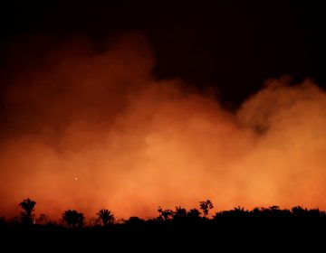 Smoke billows during a fire in an area of the Amazon rainforest near Humaita, Brazil, on Aug. 17. (Ueslei Marcelino/Reuters)