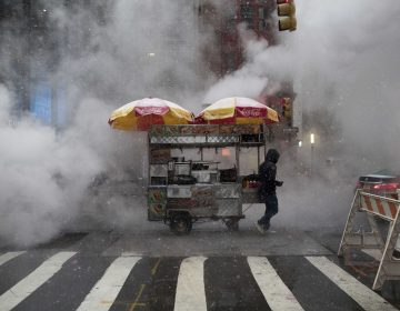 Snow falls on a street food vendor as he makes his way down Broadway with his cart past steam rising in New York, NY. (AP Photo/Mary Altaffer)
