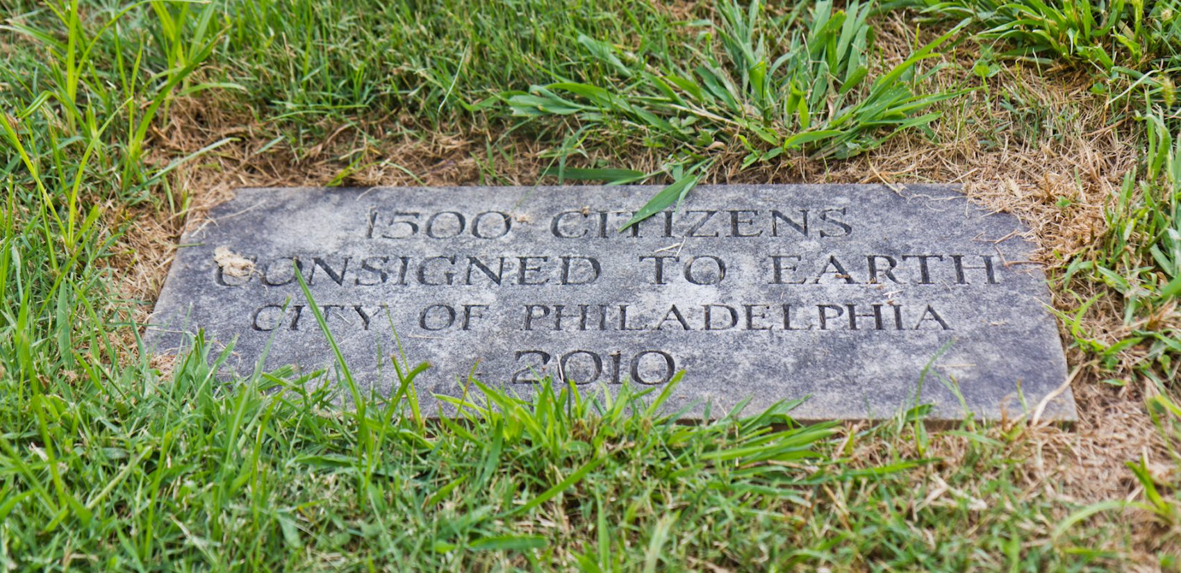 A grave without names marks the spot where aborted fetuses are buried. (Kimberly Paynter/WHYY)