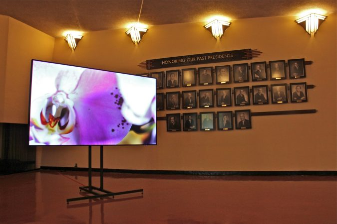 Visual artist David Hartt has installed an exhibit at Beth Sholom Synagogue in Elkins Park, designed in the 1950s by architect Frank Lloyd Wright. (Emma Lee/WHYY)