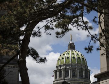 Shown is the Pennsylvania Capitol in Harrisburg, Pa., Monday, May 6, 2019. (Matt Rourke/AP Photo)