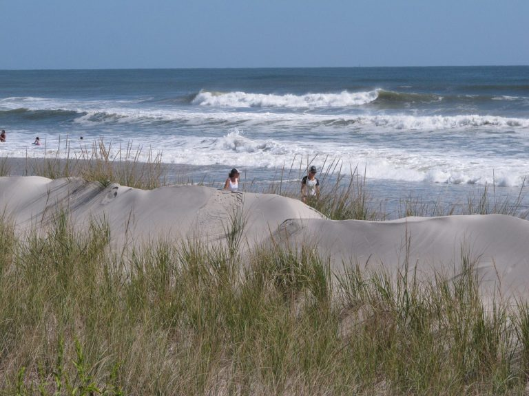 This Sept. 20, 2019 photo shows some of the sand dunes in Stone Harbor, N.J. (Wayne Parry/AP Photo)