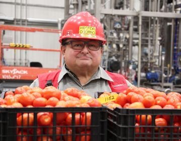 Hector Osorno is the Kraft Heinz Ketchup Master, whose job it is to make sure around 70% of the ketchup sold in America tastes the way it should. (Dan Charles/NPR)