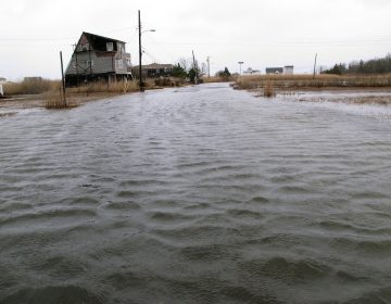 This March 14, 2017, photo shows the flooded streets of a back bay neighborhood in Manahawkin N.J., after a moderate storm. (AP Photo/Wayne Parry)