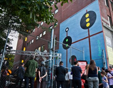 Aspect 281 at 990 Spring Garden Street is part of Site/Sound: Revealing the Rail Park, a public art festival. (Kimberly Paynter/WHYY)