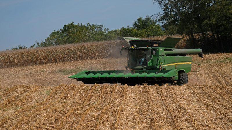 A farmer drives a combine to harvest corn Sept. 27, 2019, for Braucher Farms in Centre Township, Pennsylvania. (Matt Smith for Keystone Crossroads)