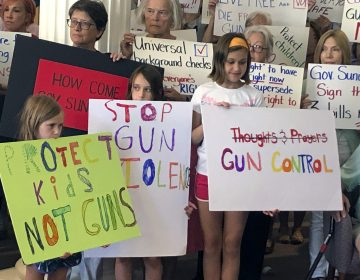 Supporters of gun control measures gather at the Legislative Office Building in Concord, N.H., in August, to urge Republican Gov. Chris Sununu to act after mass shootings in Texas and Ohio. (Michael Casey/AP Photo)