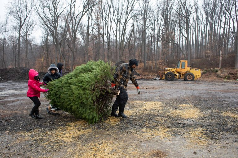 The Lynard family carries their Christmas tree at Linvilla Orchards in Media, Pennsylvania on Sunday. (Becca Haydu for WHYY)