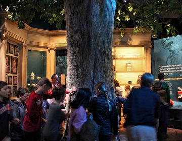 The exhibit room that houses the Liberty Tree at the Museum of the American Revolution is softly lit and full of tactile experiences, but the hubbub can be too much for some children with autism. (Emma Lee/WHYY)