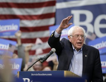 Sen. Bernie Sanders, I-Vt.,speaks to supporters at an Iowa rally in March. (Nati Harnik/AP Photo)