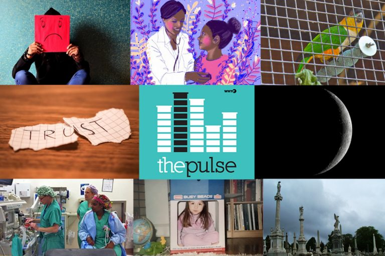 (Collage: The Pulse/WHYY)