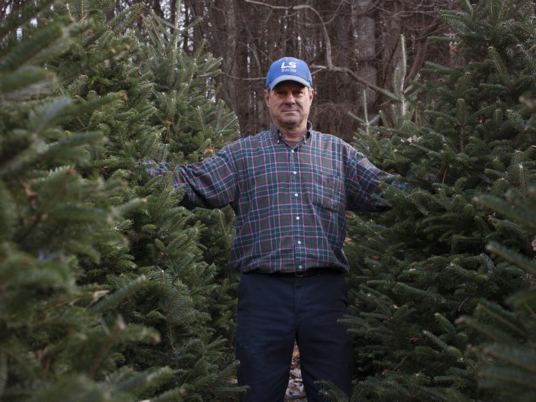 Joey Clawson at one of his Christmas tree stands on the first day of harvest. He grows about 95,000 firs on his operation. (Irina Zhorov for WHYY)