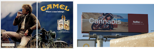 A side-by-side comparison shows advertisements for Camel cigarettes and cannabis.