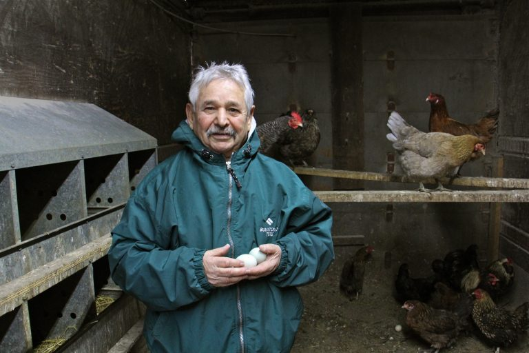Kazem Nabavi visits the chickens he keeps behind his tire shop in Port Richmond. His animals, including a pony, two peacocks, and ducks, remind him of his childhood in Iran. (Emma Lee/WHYY)