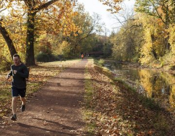 In this Saturday, Oct. 24, 2015, photo, a man runs along the canal path in Delaware Canal State Park at Washington Crossing, Pa. The canal path, the central feature of the Delaware Canal State Park, runs 60 miles parallel to the Delaware River in southeastern Pennsylvania. (Jonathan Elderfield/AP Photo)