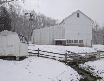A small creek runs through the Shirk family farm in Caenarvon Township, Lancaster County on Wednesday, Jan. 8. 2020. (Rachel McDevitt/WITF)