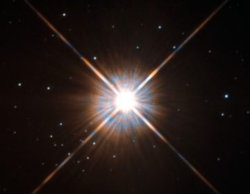 A shot of Proxima Centauri from the Hubble Telescope. Image: ESA/Hubble & NASA
