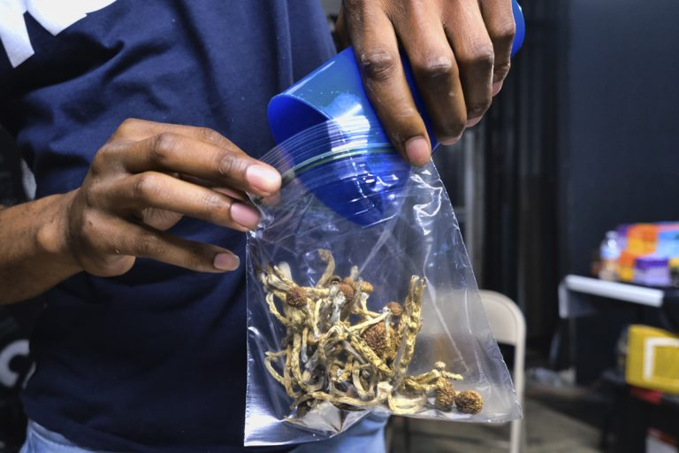 A person bags psilocybin mushrooms at a pop-up cannabis market in Los Angeles. (AP Photo/Richard Vogel)