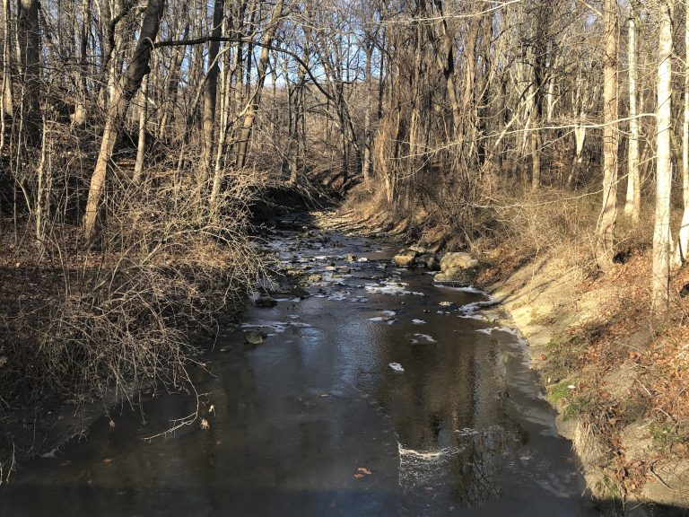 Pike Creek near Newark. Officials says the Clean Water Trust would pave the way for cleaner drinking water, improved stormwater runoff and higher-quality waterways. (Cris Barrish/WHYY)