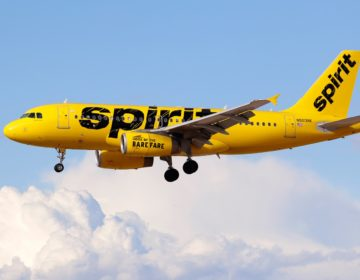 An Airbus A319 jetliner, belonging to Spirit Airlines, lands at McCarran International Airport in Las Vegas, Nevada on March 5, 2015. (AP Photo)