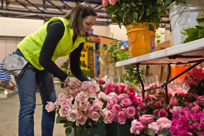 René Tucci constructs the Princess Grace Rose Garden at the 2020 Philadelphia Flower Show. (Kimberly Paynter/WHYY)