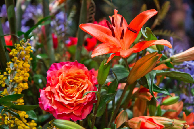 """Flowers atop the main exhibit of the 2020 Philadelphia Flower Show, themed """"Rivera Holiday."""" (Kimberly Paynter/WHYY)"""