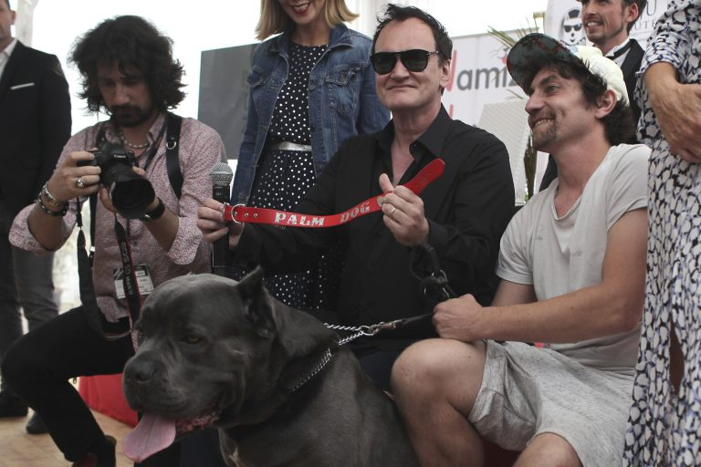 When Quentin Tarantino accepted the Palm Dog award at the 2019 Cannes  Film Festival, he called Sayuri, the dog actor in