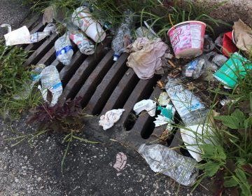 Stormwater drains in Philadelphia have traps to capture trash, but smaller pieces of plastic can get through all the way to the river. (Catalina Jaramillo/WHYY)