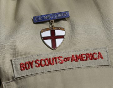 Faced with hundreds of sexual abuse lawsuits, the Boy Scouts of America has filed for bankruptcy. (Tony Gutierrez/AP)