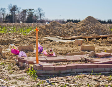 The Islamic Cemetery of Delaware. (Kimberly Paynter/WHYY)