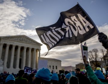 Demonstrators rally outside the Supreme Court, in Washington, Wednesday, March 4, 2020, as the court takes up the first major abortion case of the Trump era Wednesday. (AP Photo/Andrew Harnik)