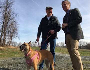 State Sen. Jack Walsh (left) holds his dog Maisey as he talks with State Rep. Mike Ramone at the Carousel Park Bark Park Wednesday morning. Both lawmakers sponsored a bill extending protections for dogs being kept outside. (Mark Eichmann/WHYY)