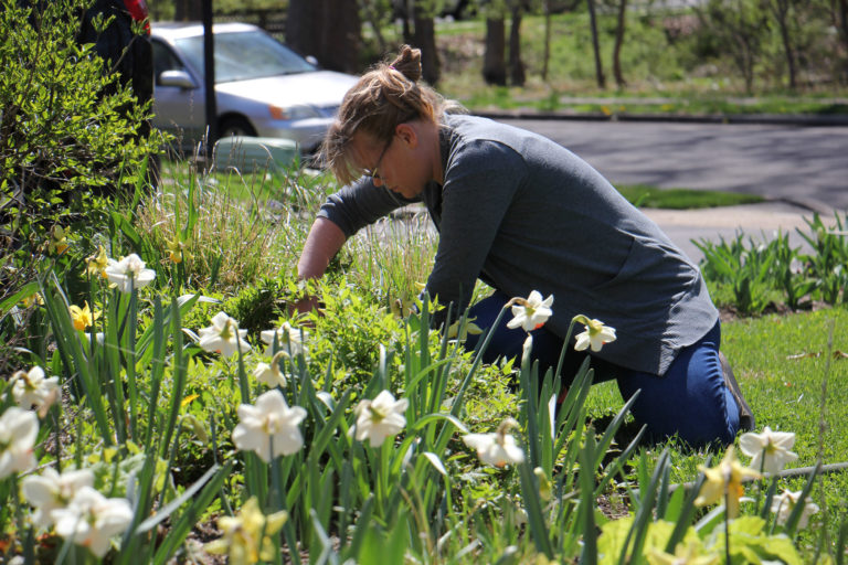 With her landscaping business closed because of the coronavirus pandemic, Elizabeth Haegele works in her own garden in Morrisville. (Emma Lee/WHYY)