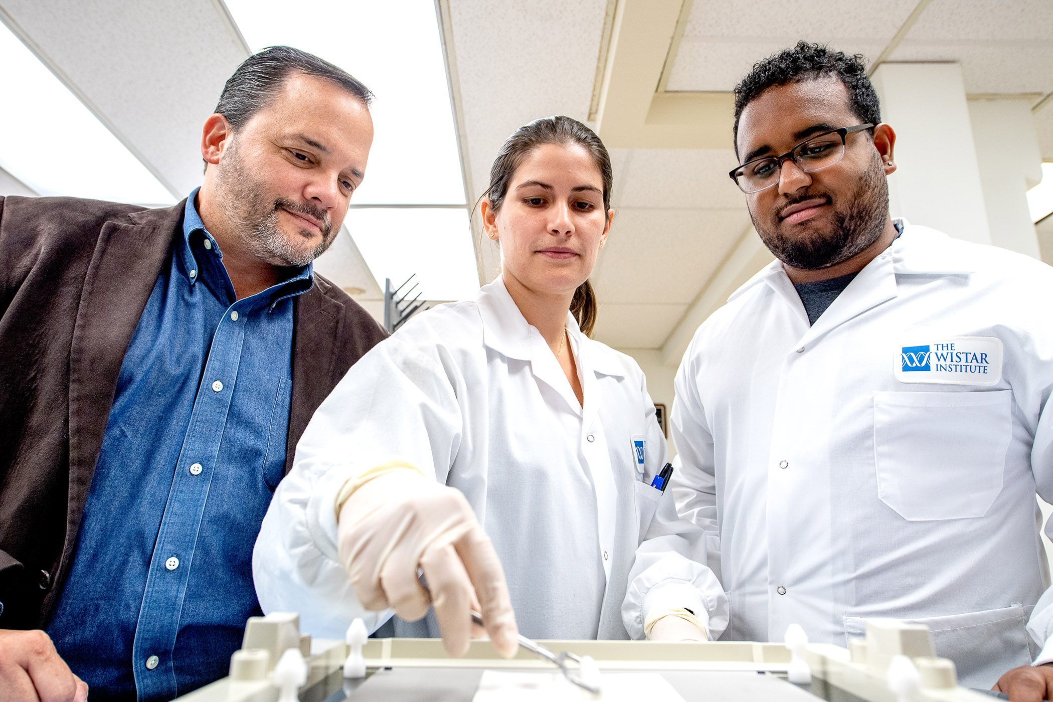 Dr. Luis Montaner and scientists in his lab fine-tune an assay.