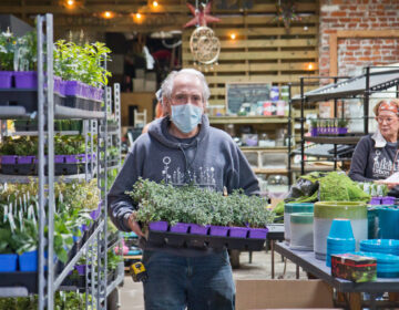Curtis Alexander, owner of South Philadelphia plant nursery Urban Jungle, said despite having a waiver to operate through the pandemic, the store is doing about 10% of their usual business. (Kimberly Paynter/WHYY)