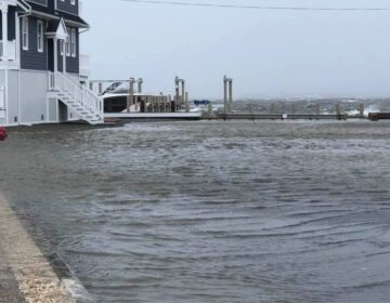 Minor tidal flooding in Ocean County's Pelican Island early Monday afternoon, hours before high tide along the Barnegat Bay. (Image courtesy of Dominick Solazzo)