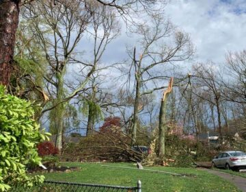 Storm damage Tuesday afternoon in the area of Bay Avenue and Twin Oaks Drive in Toms River. (Photo courtesy of Tom Damiano, as submitted to JSHN)