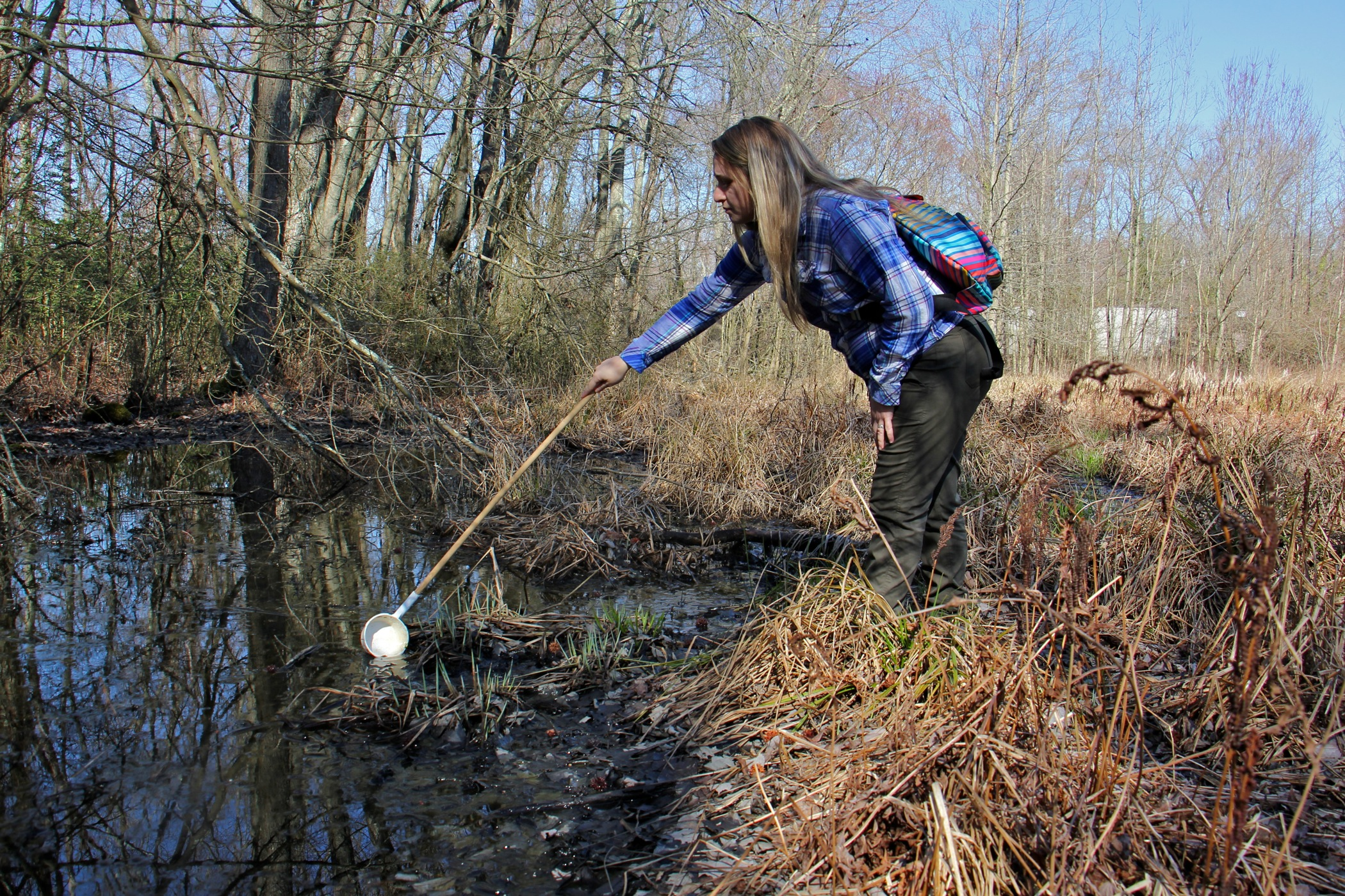 Autumn Angelus collects a water sample from a vernal pool at Elmer Lake Wildlife Management Area. (Emma Lee/WHYY)