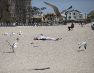 A woman sleeps on Brighton beach undisturbed by seagulls fluttering around her in the Brooklyn borough of New York, on Saturday, April 25, 2020. (AP Photo/Wong Maye-E)
